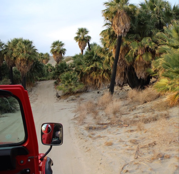 palm springs desert jeep tour