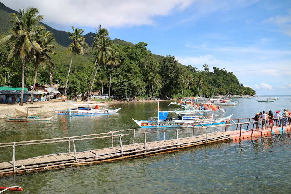 puerto princesa marina palawan why you should visit the philippines