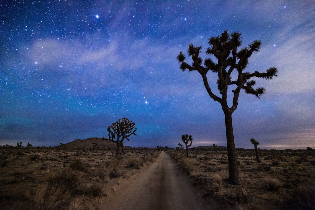 Joshua Tree National Park At Night… Plus Astrophotography Tips