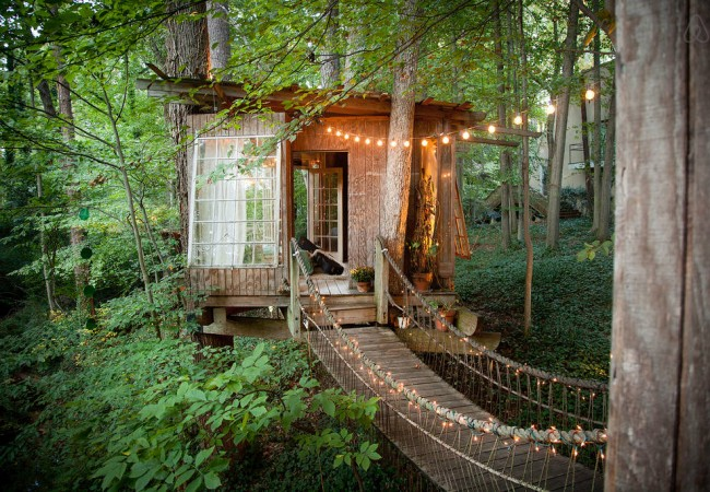 Airbnb Treehouse: World's Most Wish-Listed Listing