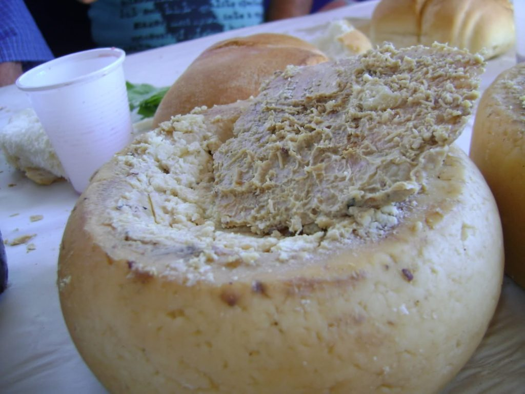 12-weird-foods-in-europe-casu-marzu